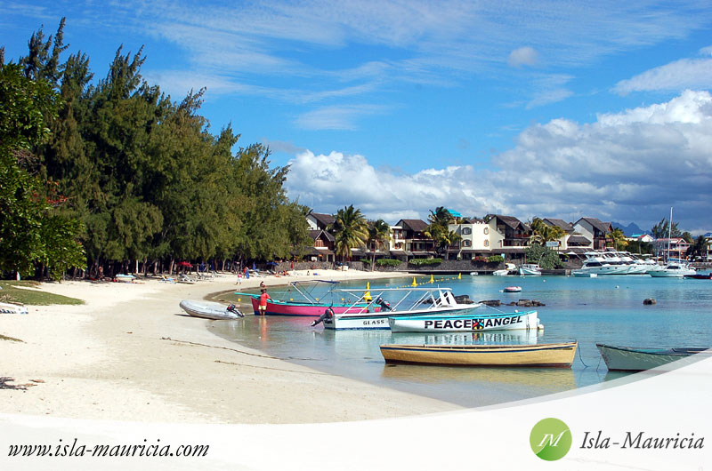 Holiday home rental agencies future in Mauritius