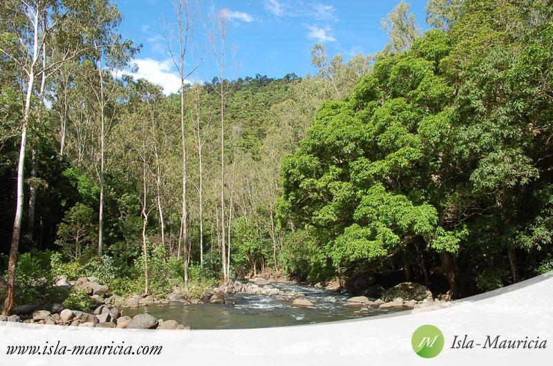 Mauritius - Gorges Black River National Park