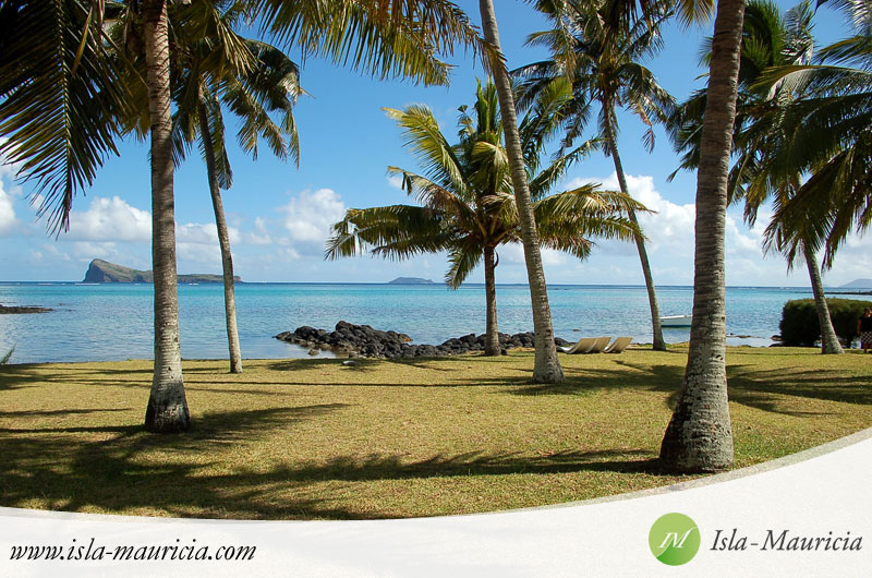 Vacation rental agencies future in Mauritius
