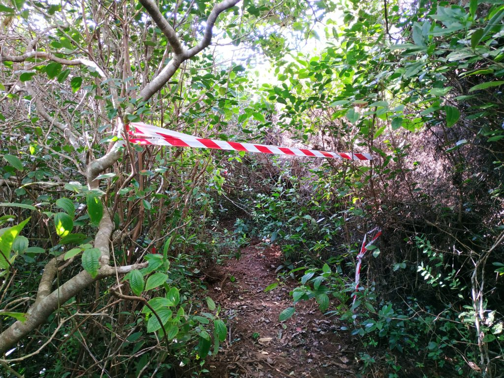 Trochetia Trail Mauritius - The wrong entrance
